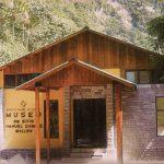 Museos y sitios arqueológicos reciben otra vez a visitantes